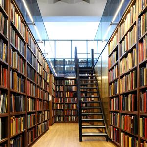 Библиотеки Элисты